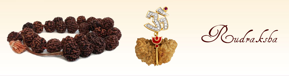 Things to know about the Rudraksha