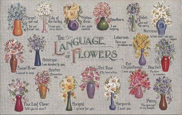 flowers and their significance