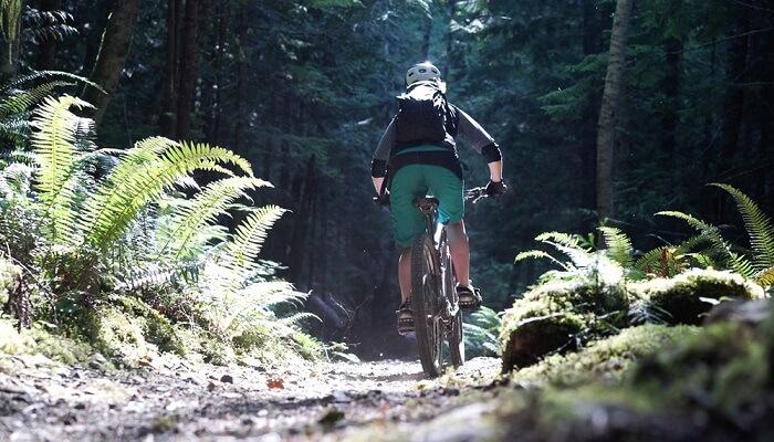 explore a local trail