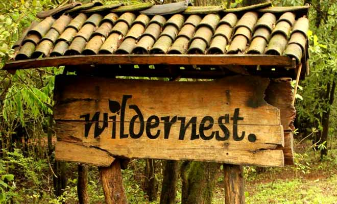 wildernest resort goa