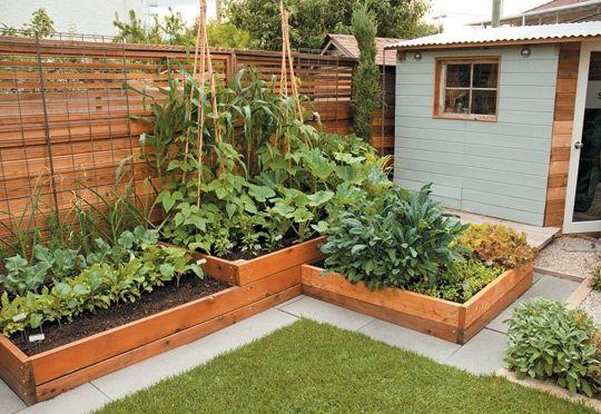 small-garden-idea