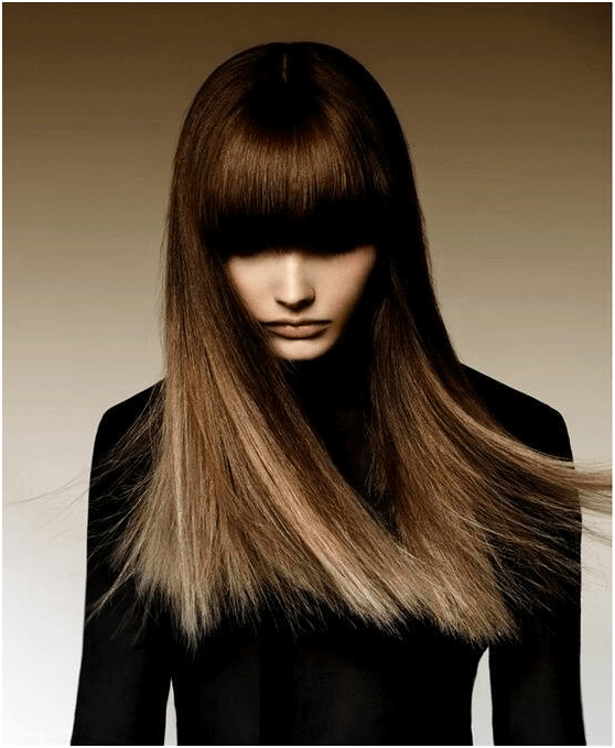 Delicate Chocolate Ombre Hair
