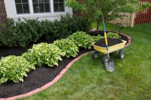 How to Lower Utility Bills with Better Landscaping