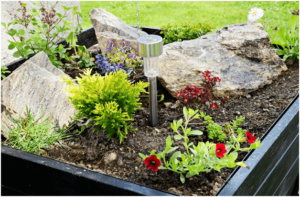 How to Make Your Garden Even Greener