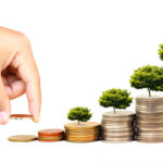 Investments that Make Sense for Growth