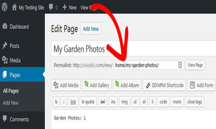 To Edit WordPress Permalink Structure for Single URL
