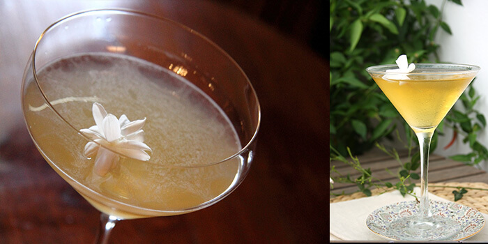 Golden Jasmine Martini Cocktail
