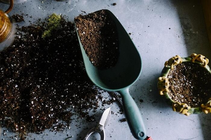 take a soil test