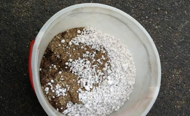 get the soil