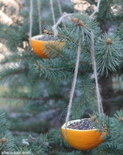 christmas tree bird santuary