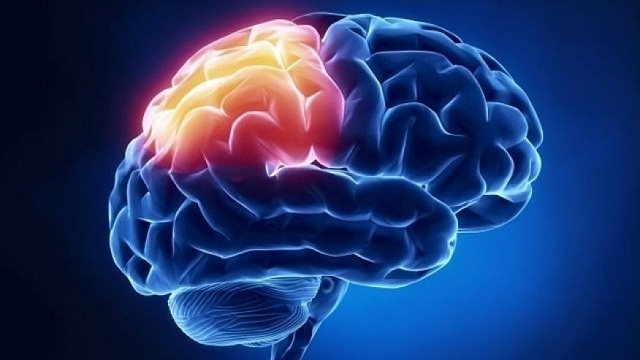 Exploring The Most Common Causes Of Traumatic Brain Injury
