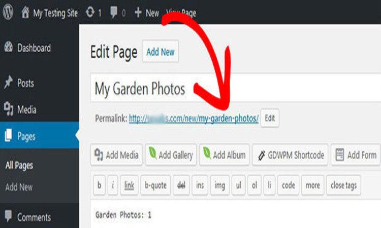 Edit WordPress Permalinks