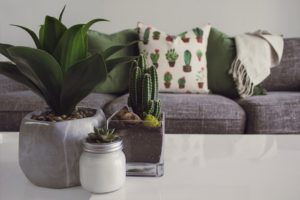 Tricks to Breathe New Life into Your Home