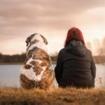 10 Useful Apps Every Pet Lover Needs to Have