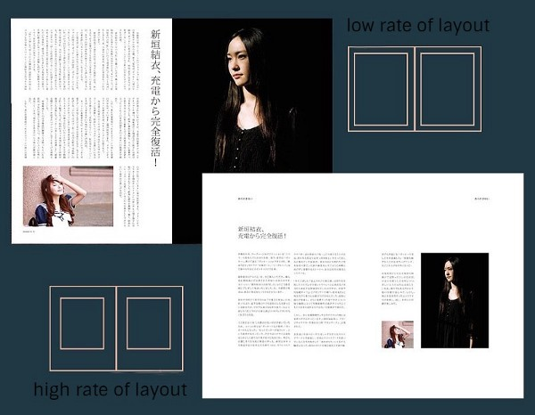 influence of layout rate on the temperament of the picture 2