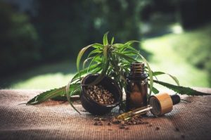 How CBD Oil Can Improve Your Life in One Month