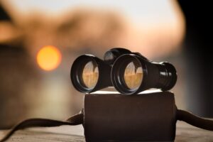 Essential Aspects to Consider for Purchasing Binoculars with Night Optics