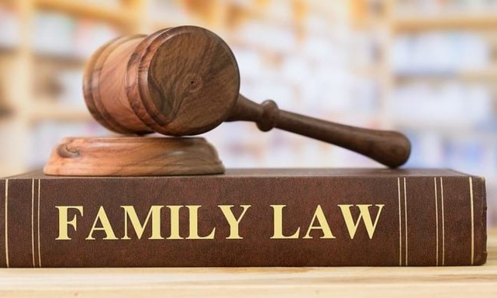 Essential Reasons Why You Need to Hire a Professional Family Lawyer