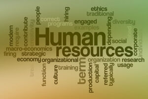 What to Look for in a Human Resource Intern