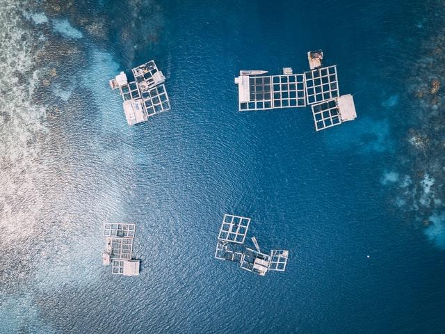 Biggest Benefits of Aquaculture Farm