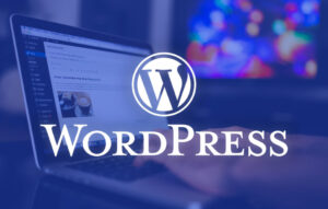 Questions You Must Ask Before Hiring a WordPress Developer