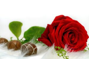 Flowers and Chocolate Delivery