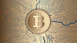 How To Choose Your Bitcoin IRA Custodian